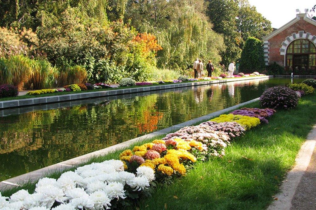 Ботаническом саду мгу аптекарский огород
