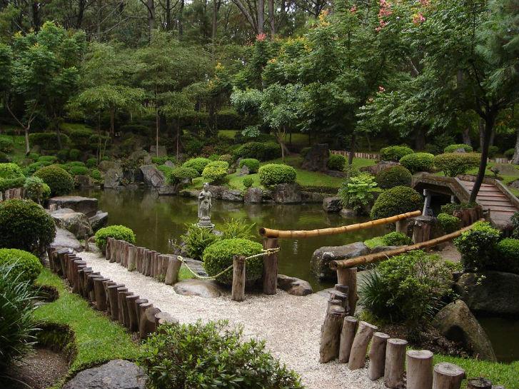 Ботанический сад им. Цицина