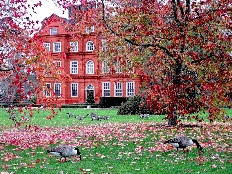 Дворец в Королевских садах Кью